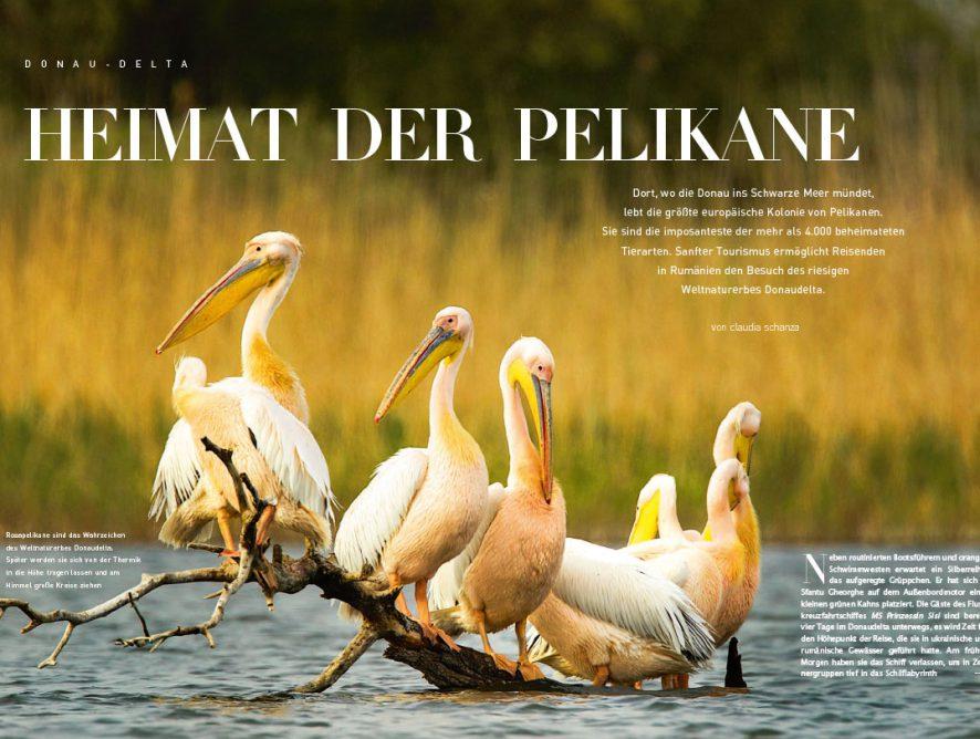 KURIER Freizeit: Donau-Delta - Heimat der Pelikane